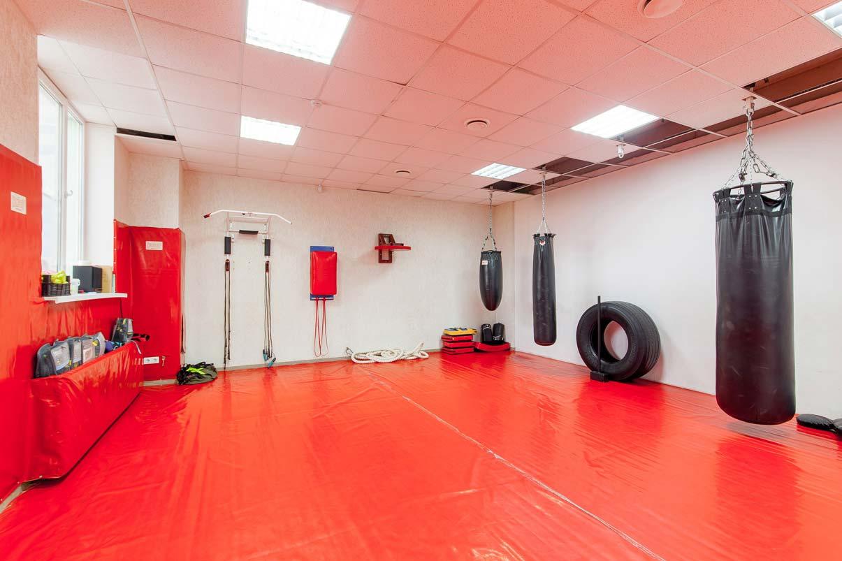 Боксерские груши для тренировок по боевым единоборствам в спортивном клубе Non Stop